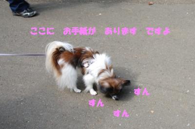 DSC_2205.png