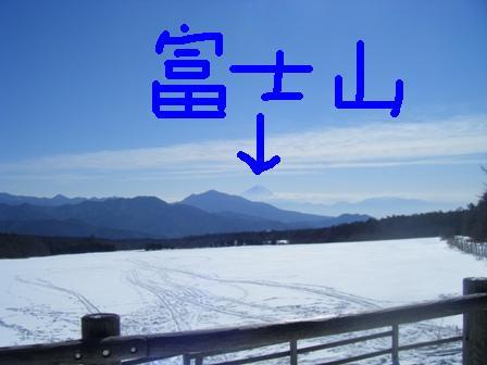 2008_01270021.jpg