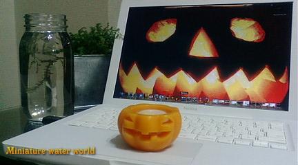 happy halloween①
