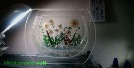 押し花と貝殻の水槽 其の二