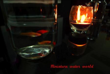 ガラス瓶の中の魚とアロマ