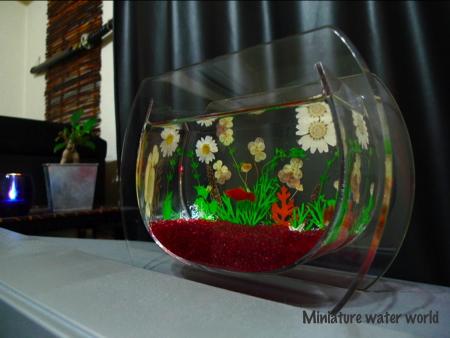 白い押し花と貝殻の水槽~きょうのモバイル~