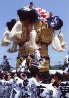 田尾さんが撮った写真・デスクトップ