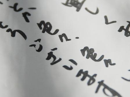 DSC_0028_20090108114619.jpg