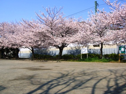 Jinsei Park 2