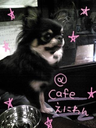 @ cafe えにわん