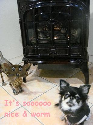 ** Real Fire Place **