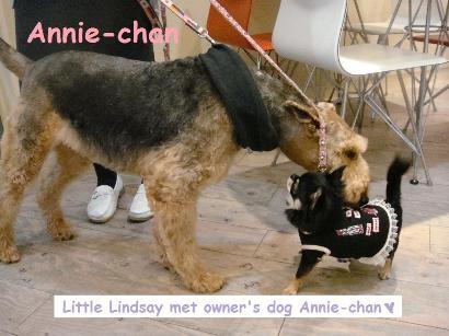meets Annie