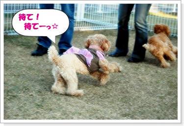 クッキー君&ココ☆3