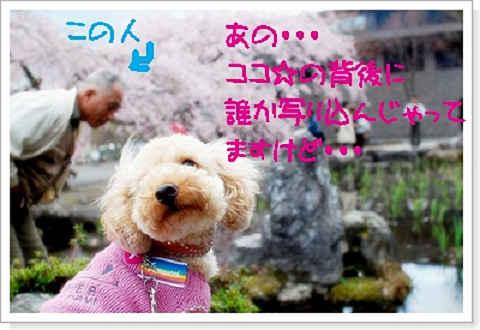 DSC_0225a.jpg