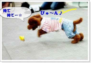 chibi-kun25a.jpg