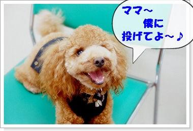 liebe-kun10a.jpg