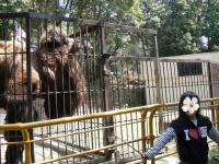 池田動物園25