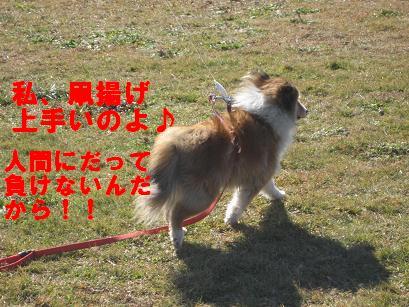 IMG_0074_20100118230407.jpg