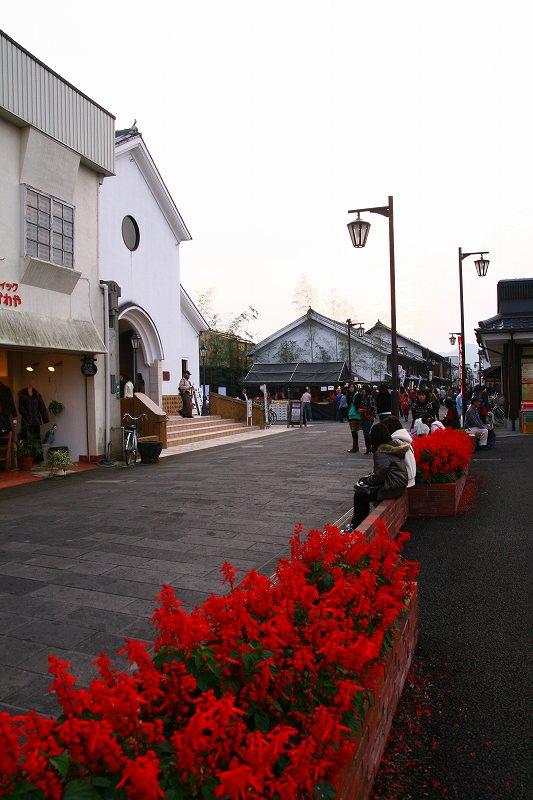 s-久住赤川臼杵20081101 117