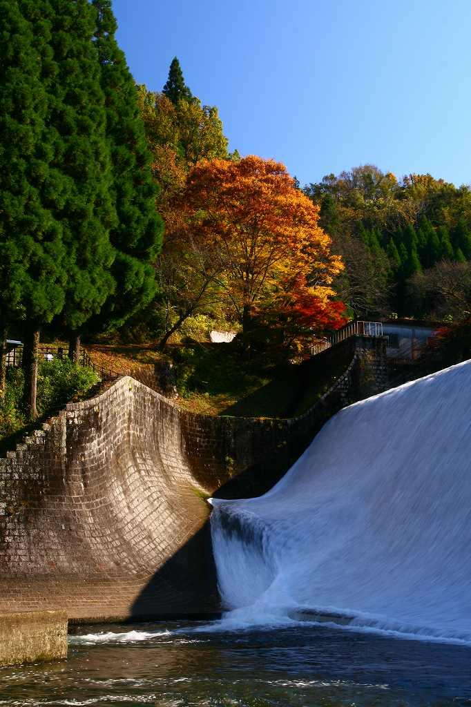 s-岡城用作白水20081112 145