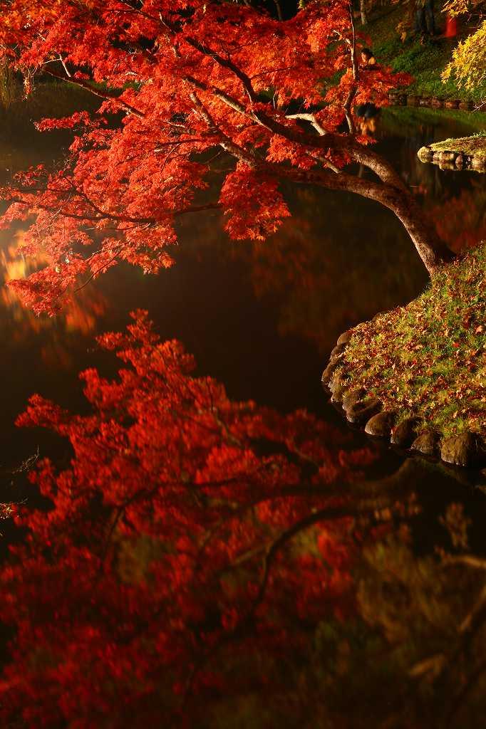s-用作岡城20081116 171