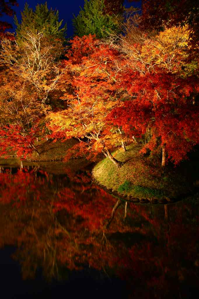 s-用作岡城20081116 162