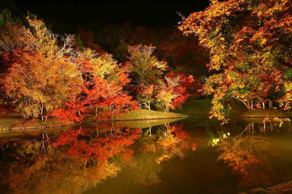 s-用作岡城20081116 262