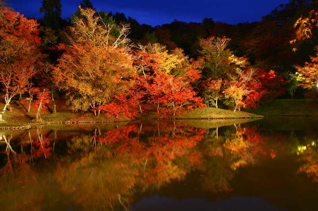 s-用作岡城20081116 156