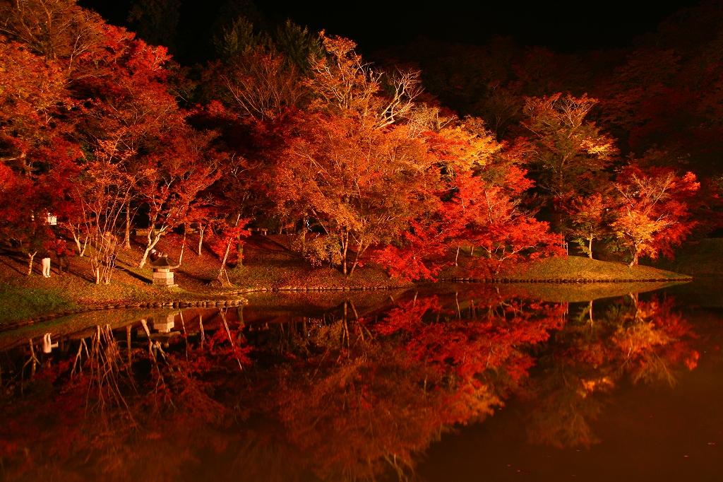 s-用作岡城20081116 260