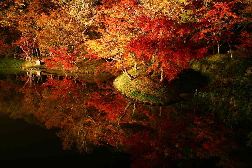 s-用作岡城20081116 242