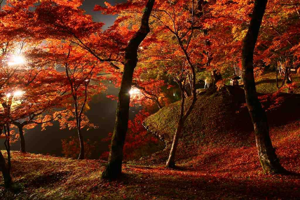 s-用作岡城20081116 228