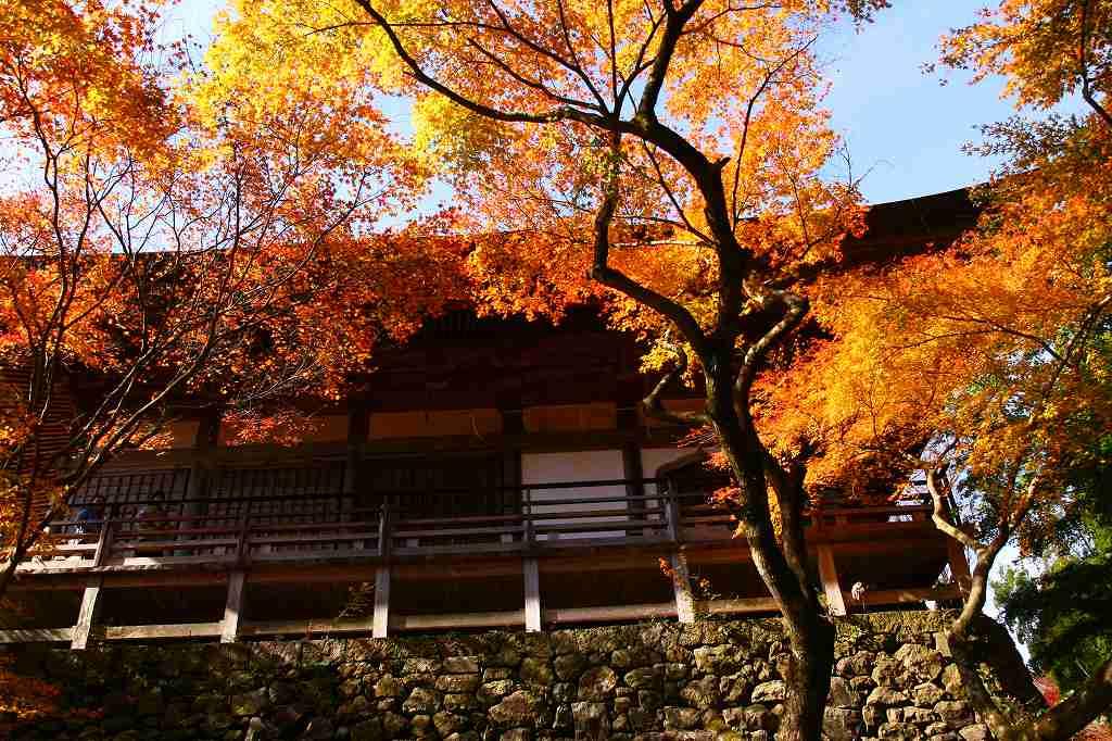 s-両子寺湯布院20081123 265