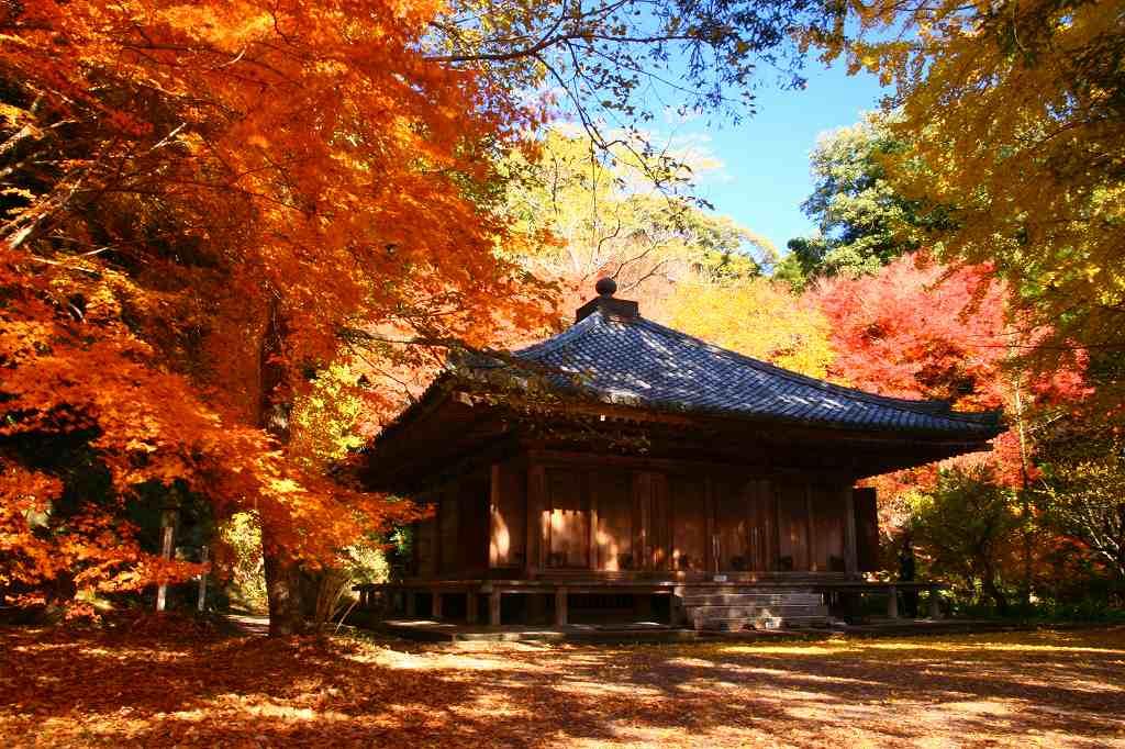 s-富貴寺20081202 007
