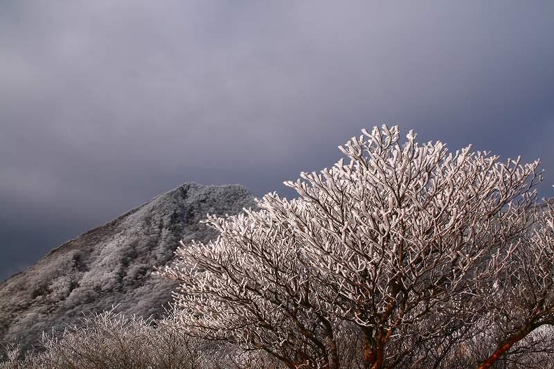 s-鶴見山別府花火20081223 130