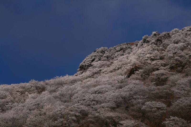 s-鶴見山別府花火20081223 144