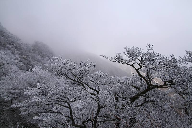s-鶴見鞍ケ戸20090104 077
