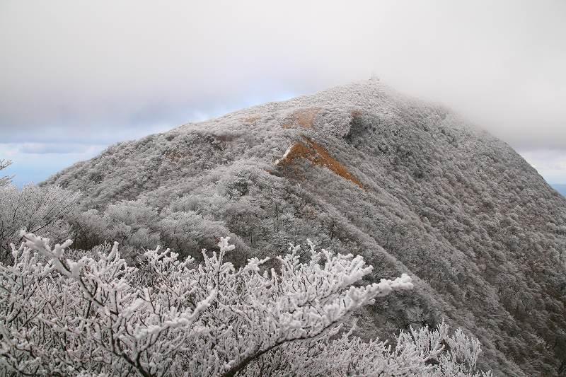s-鶴見鞍ケ戸20090104 102