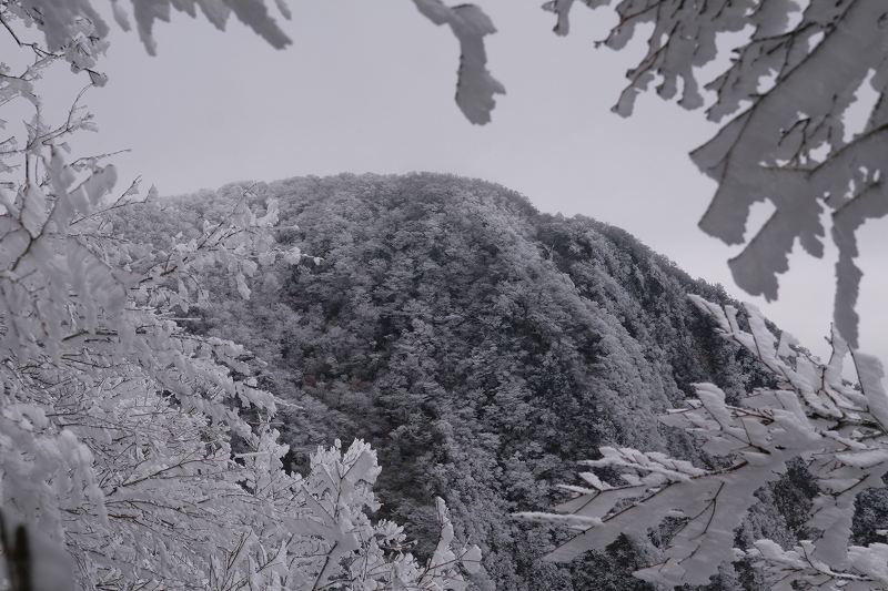 s-鶴見鞍ケ戸岳20090202 266