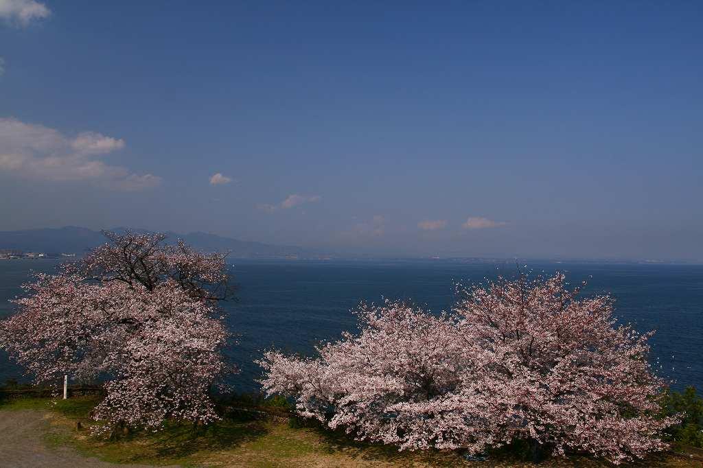 s-両ぐん高崎山20090331 015