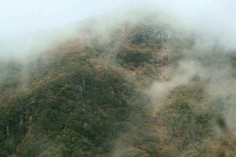 s-黒岳20090505 050