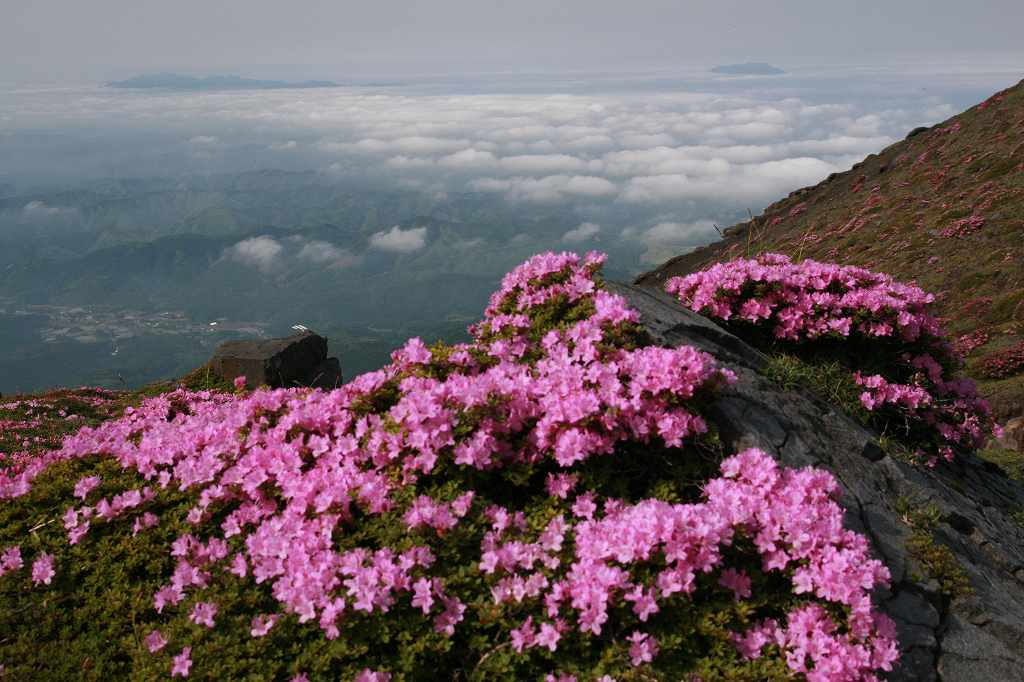 s-高千穂峰20090523 096
