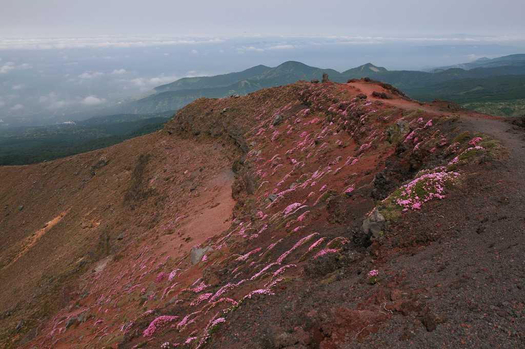 s-高千穂峰20090523 131