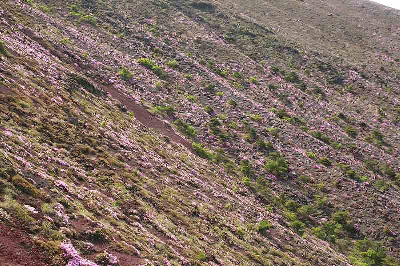 s-高千穂峰20090523 165