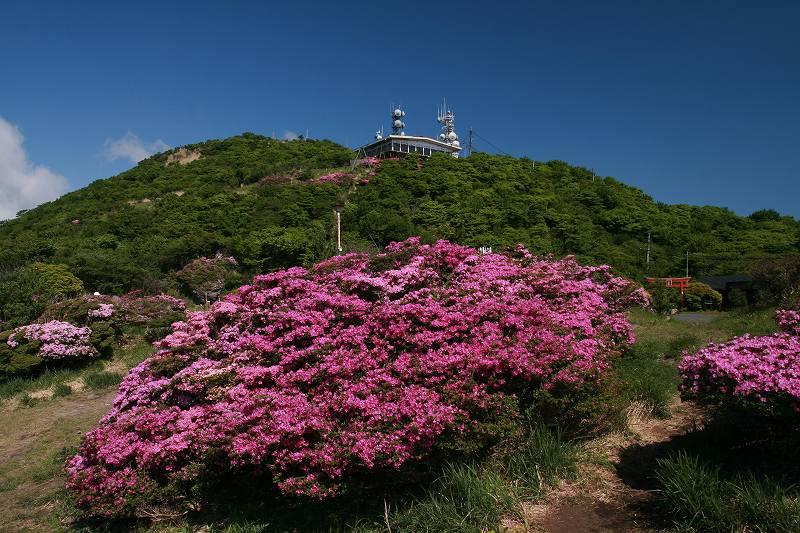 s-鶴見岳ミヤマ20090525 007