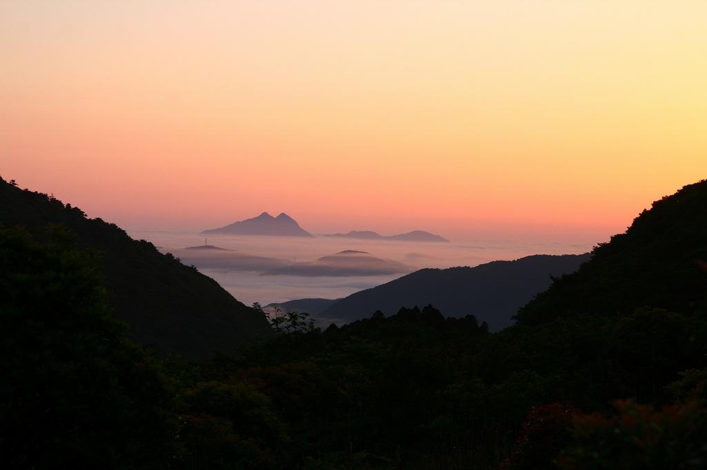 s-扇ヶ鼻岳ミヤマ20090607 013
