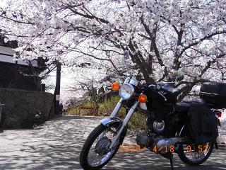 RIMG0086.jpg