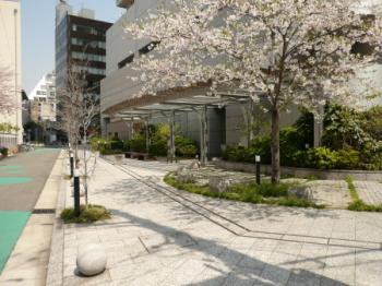 ジーニス大阪11
