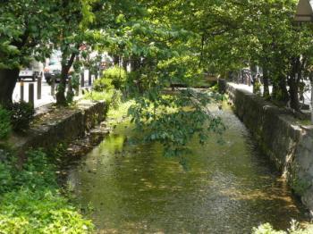 高瀬川03