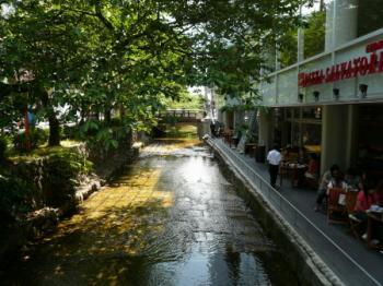 高瀬川09