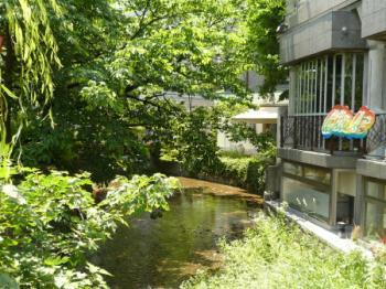 高瀬川06