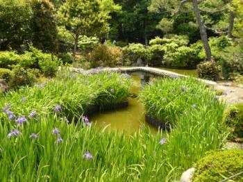 法華寺庭園06