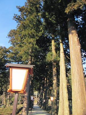 霞岡温泉神社 (2)