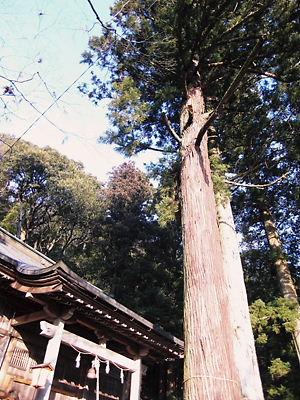 霞岡温泉神社 (6)