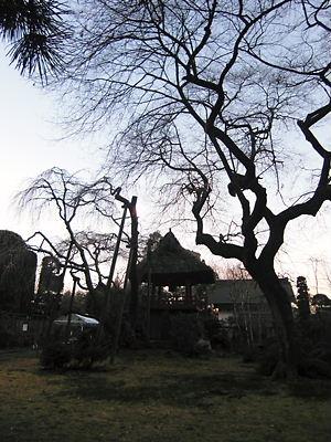 法輪寺 (4)